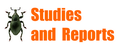 Studies and Reports